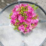 buchet-parfumat-cu-frezii-roz_2919_1_1533658112.jpg