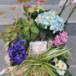 cos-cu-flori-de-primavara-3040_3040_1_1550679349.jpg