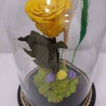 cupola-trandafir_2839_1_1512377744.jpg