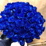 lg_201403024-100-blue-roses.jpg