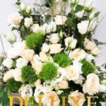 pachira-arborele-banilor-2913_2913_1_1533745101.jpg