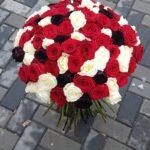 101 rosu negru alb res