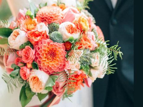 Fotografie, cum realizați cele mai frumoase instantanee florale
