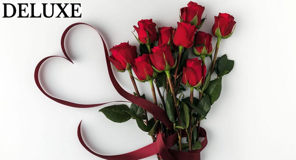 Trandafirii roșii, semnificația, simbolismul și istoria acestor flori